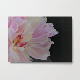 Peony Bliss by Teresa Thompson Metal Print