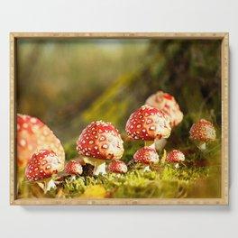 Beautiful but toxic - Fly agaric - Amanita - Autumn illustration - #society6 #buyart Serving Tray