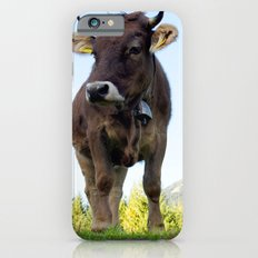 Cow on the pasture Slim Case iPhone 6