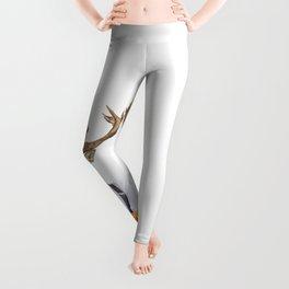DIEGO WILD Leggings