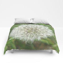 Dandelion Seedhead Comforters