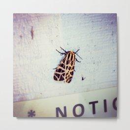 Moth-er Metal Print