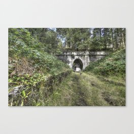 Mierystock Tunnel Canvas Print