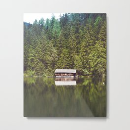 Cottage in the Forest (Color) Metal Print