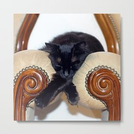 Relaxed Black Cat Sleeping Between Two Chairs  Metal Print