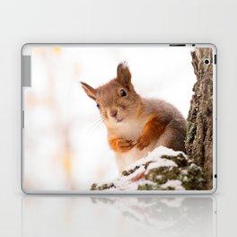 Squirrel in first snow #decor #buyart #society6 Laptop & iPad Skin