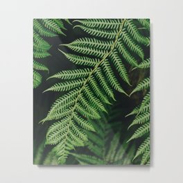 Dark Greens Metal Print