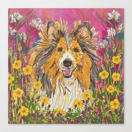 Sweet Summer Sheltie Canvas Print