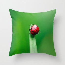 Balancing Acts Throw Pillow