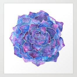 Ultra violet echeveria rosette succulent Art Print