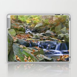 Brandywine Springs Laptop & iPad Skin