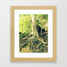Tree Roots Framed Art Print