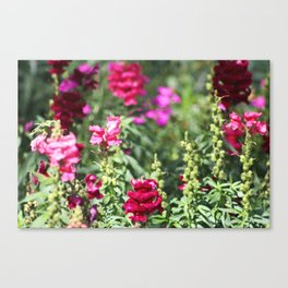 Garden of Whimsy Canvas Print
