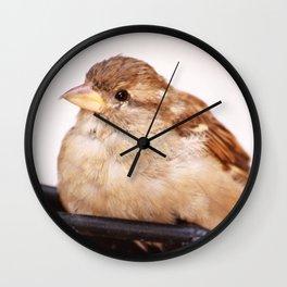 Sweet Little Birdie Wall Clock
