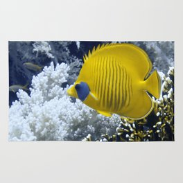 Butterfly Fish Over Fire Coral Rug