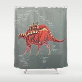 Gastonia Burgei Muscle Study Shower Curtain