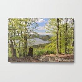 Machovo Jezero lake Metal Print