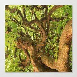 Trangle tree Canvas Print