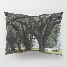 Tree Arch Drive Pillow Sham