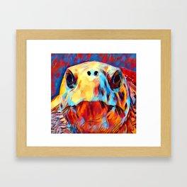 Loggerhead Sea Turtle Framed Art Print