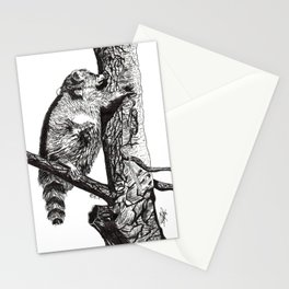 Mapache. Racoon Stationery Cards