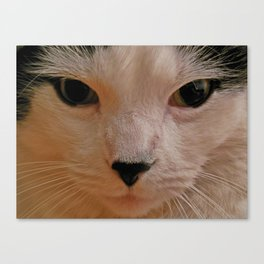 This IS my Happy Face Canvas Print