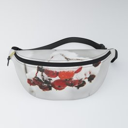 Bunch of red berries in winter Fanny Pack