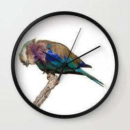 Fly Eye Wall Clock