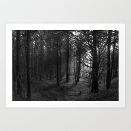 Forest Cathedral - Human Series Art Print