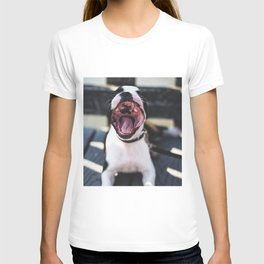 Boston Terrier or Sea Lion? T-shirt