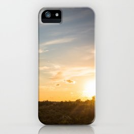 Ocaso en la marisma iPhone Case