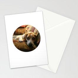 Sleepy Bruno  Stationery Cards