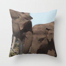 elephant mum & bub Throw Pillow
