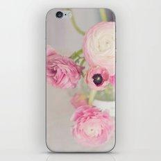 Pale Pink Ranunculus iPhone & iPod Skin