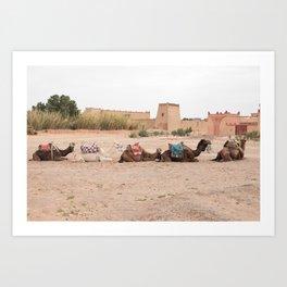 Desert Life III - Sahara Desert, Morocco Art Print