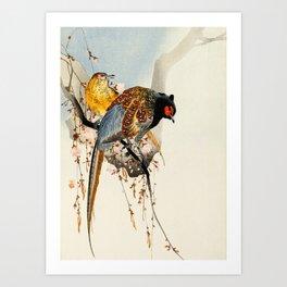 Pheasants on tree - Japanese woodblock print Art Print