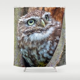 close up owl in the hole Shower Curtain