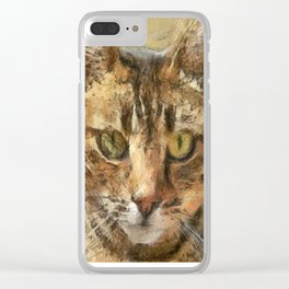 Tabby Cat Clear iPhone Case