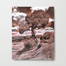 Twisted Juniper (Sepia) Metal Print