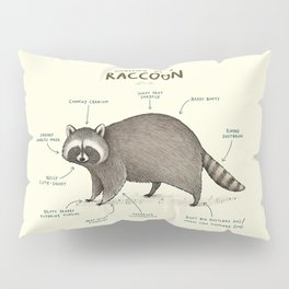 Anatomy of a Raccoon Pillow Sham