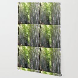 Kyoto, Bamboo Forest Wallpaper
