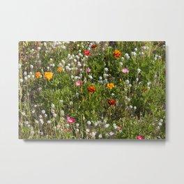 Field of Wild Flowers Metal Print