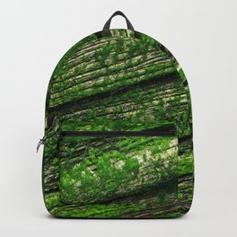 Abandoned Backpack