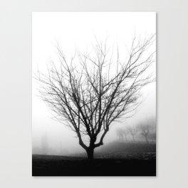 Niebla Canvas Print