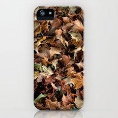 Leaf Jumble iPhone (5, 5s) Slim Case