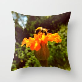 bee of autumn Throw Pillow