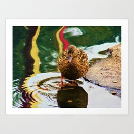 Ain't I Quackin' Cute Art Print