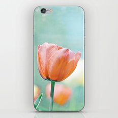 Tulip Flower Photography, Mint Teal Orange Tulips, Aqua Floral Photograph iPhone & iPod Skin