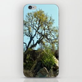 The Secrets Within... iPhone Skin