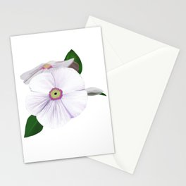 Rosy Whity Stationery Cards